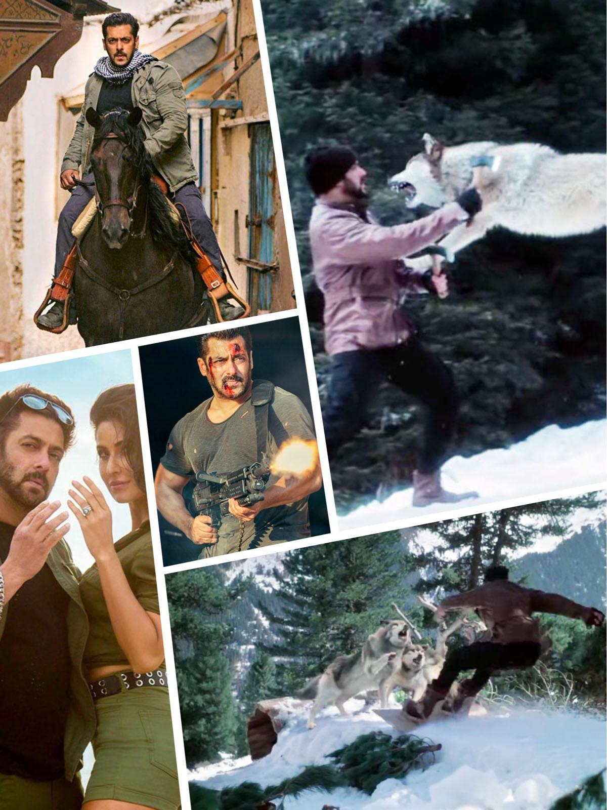 Salman Khan and Katrina Kaif in Tiger Zinda Hai. Collage 5. (Images courtesy – Google)